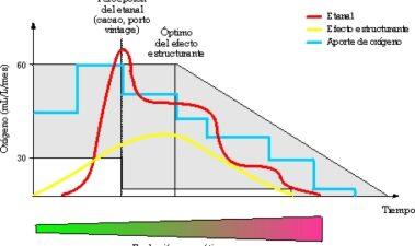Balance y perspectivas de 10 años de microoxigenación