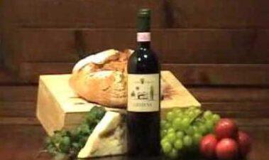 Origen de las aminas biógenas del vino y métodos de cuantificación