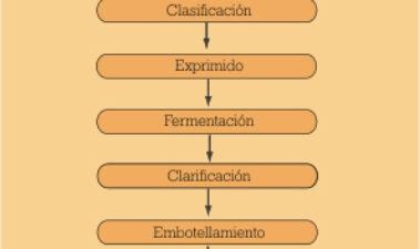Control APPCC de ocratoxina A en vino