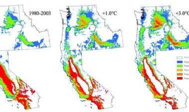 Cambio climático: observaciones, pronósticos e implicaciones generales en viticultura y producción vinícola