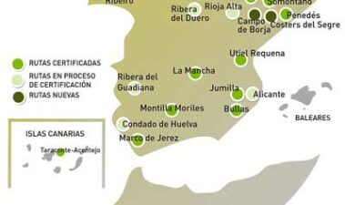 Rutas del vino de España: la apuesta de Acevin por el enoturismo de calidad