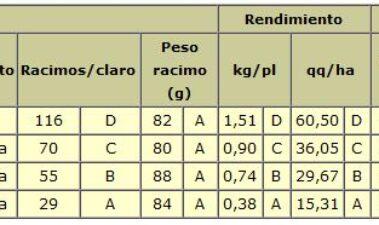 Efecto del nivel de raleo de racimos en la concentración polifenólica en vino malbec
