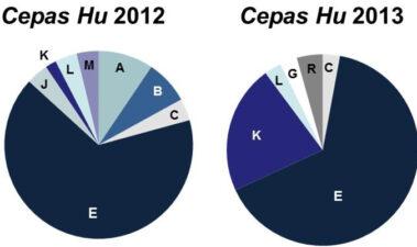 Utilización de inóculos mixtos de levaduras autóctonas como herramienta para reproducir la huella microbiológica de la zona