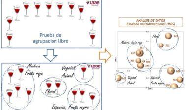 Caracterización organoléptica de vinos mediante nuevos métodos de análisis descriptivos