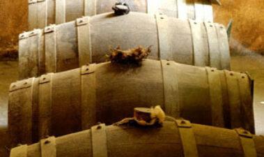 Fundamentos de la microoxigenación de vinos tintos: factores influyentes y aplicaciones