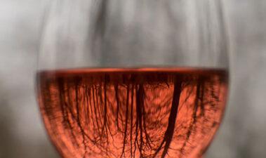 Seguridad alimentaria en los vinos de baja intervención