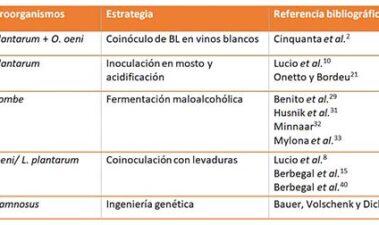 Estrategias para el desarrollo de la fermentación maloláctica en vinos con pH extremos