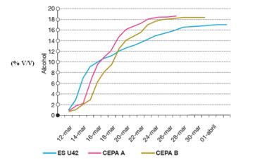 Valoración tecnológica de la levadura autóctona Saccharomyces uvarum Challenge ES 42 seleccionada para la producción del vino Amarone