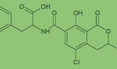 Micotoxinas y vinos ecológicos