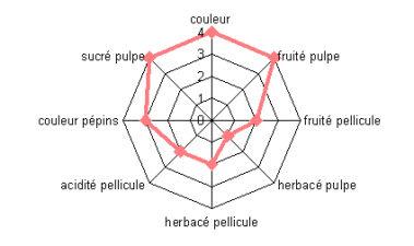 Análisis sensorial de la uva y caracterización de la madurez. Aplicación a la garnacha