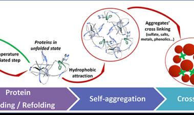 """Nuevas herramientas para la estabilización de proteínas del vino blanco [Resumen del artículo """"New tools for white wine protein stabilization""""]"""