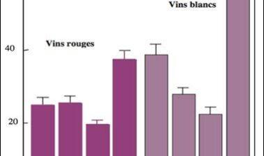 Principios y utilidad de la medida del potencial redox en los vinos