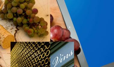 La cultura del vino, ¿moda o realidad?